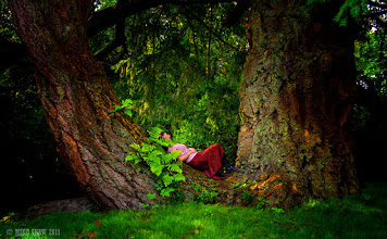 Photo: Its my wife's +Jude Shaw birthday on Sunday, we were supposed to go away a few weeks ago but sadly my wife was not well but we are heading out this weekend for a few days R&R.  This was an image of her taken a few years back taken in the grounds of a stately home in the Lake District, she is cradled in the sunken bough of a giant tree and the light is dappled through the upper branches, this really is a tree of folklore, I only wish I had gotten more information about when there.