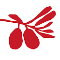 Amici Sylt icon