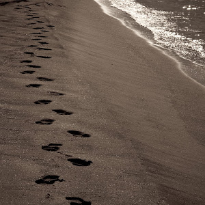 beachtracks001.jpg