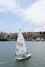 Photo: Some of the (smaller and lighter) sailors are in the radial class which has slightly smaller sail than the standard Laser rig (the colored triangle on the back corner of the sail denotes a radial sail).