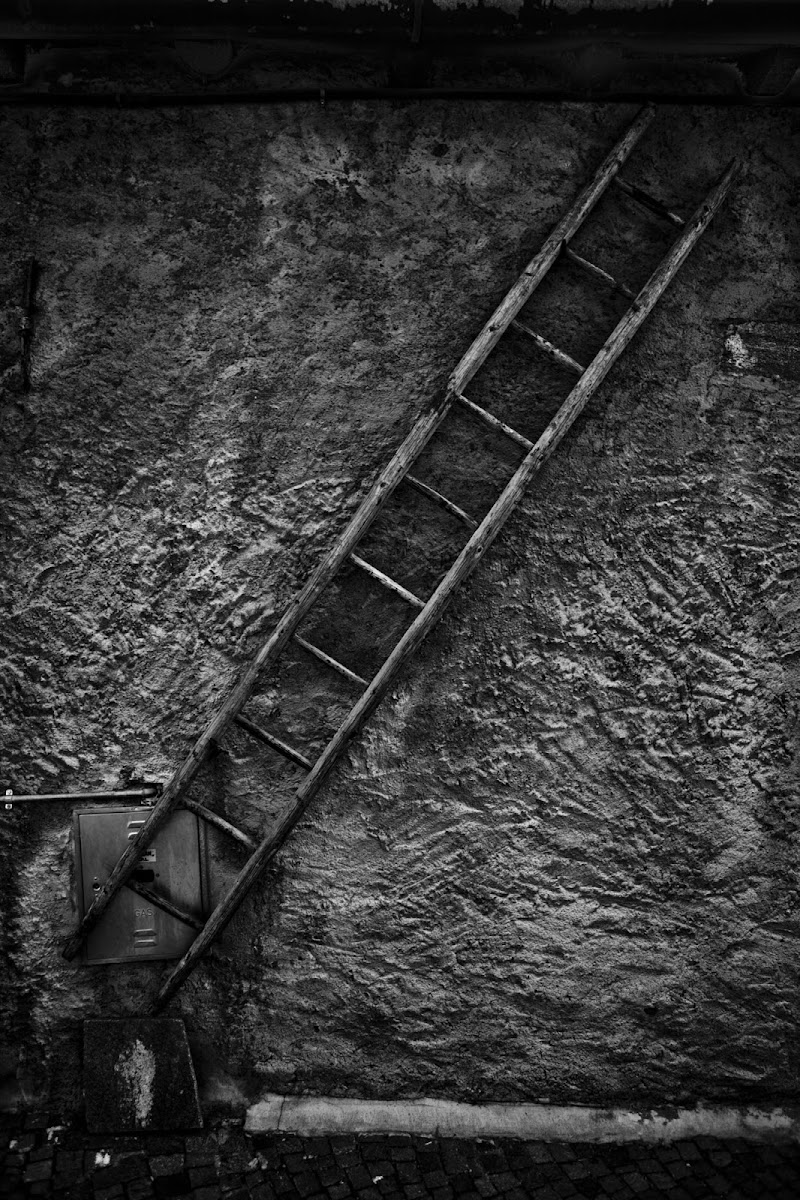 Scala di grigi di Mauro crippa