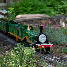 Emily on the Butterfly by Fred Prince - Transportation Trains ( emily, garden rr )