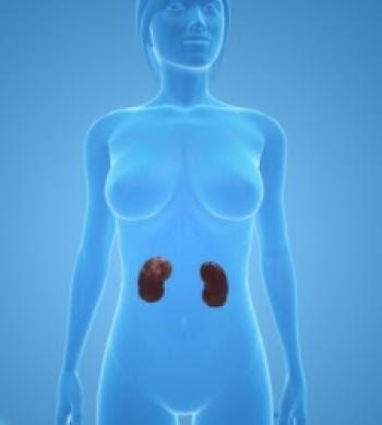 Actualidad Informática. Por primera vez un robot trasplanta un riñón a través de la vagina. Rafael Barzanallana