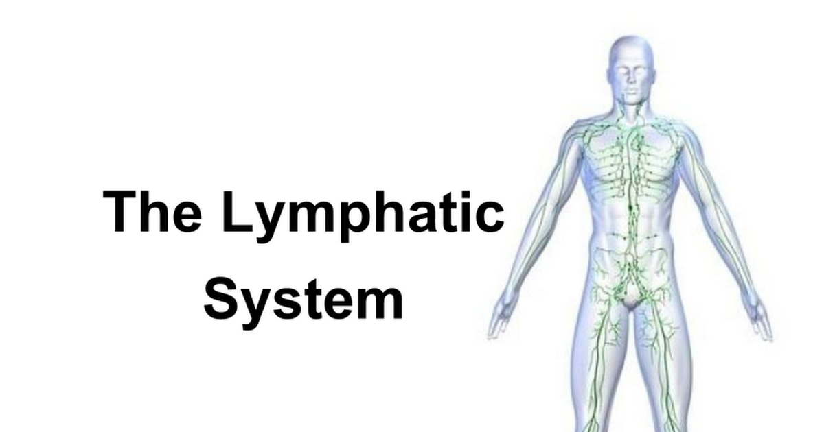 9. Lymphatic System - Google Slides