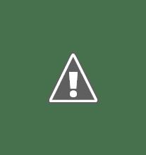 Photo: Spot-billed Duck