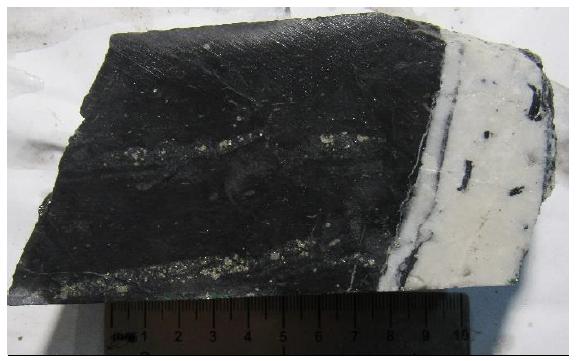 Сульфидно-карбонатно-кварцевый прожилок в пиритизированном алевропесчанике.