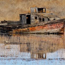 Abandoned  by Patricia Phillips - Transportation Boats ( alaska knik boats fishing abandoned )
