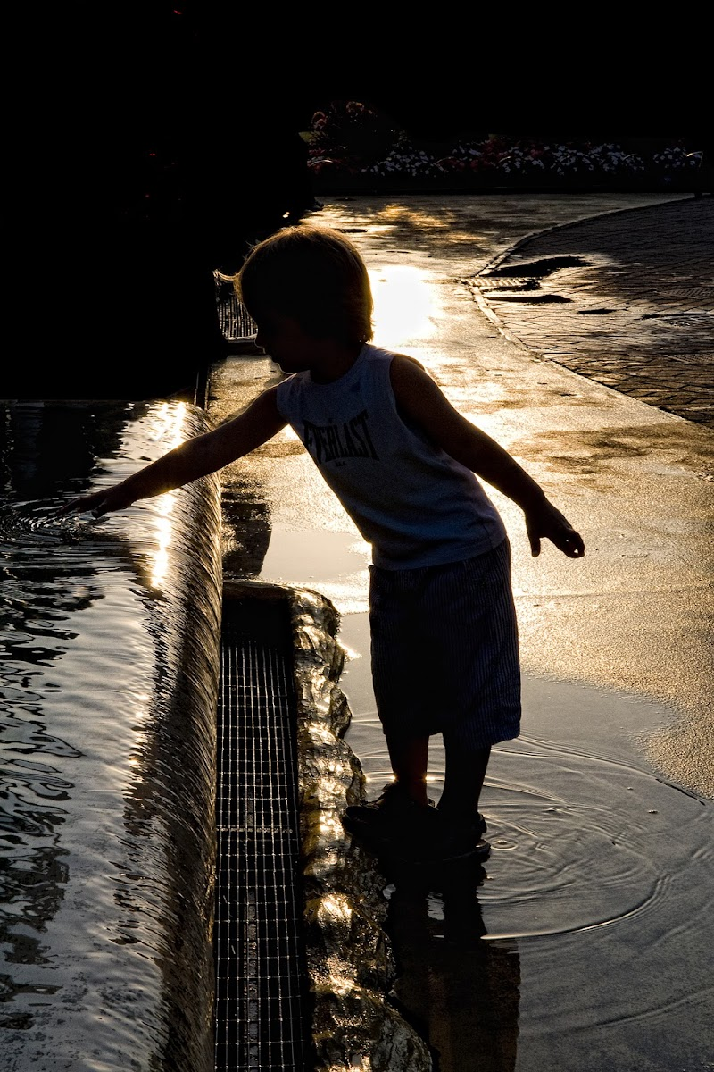 Acqua, luce e....amore... di Stefano Muzzarelli