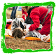 How to Give First Aid Android apk
