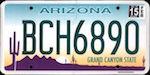 Image of the Arizona state license.