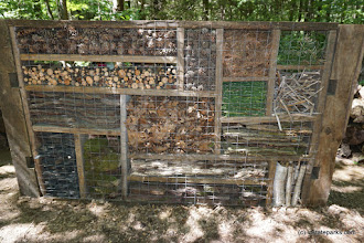 Photo: The Mondrian Insect Hotel at Niquette Bay State Park by Jessica Clarke