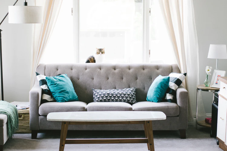 Sofa Cleaning - Why Is It Even Necessary To Do It?