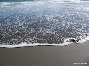 Photo: (Year 2) Day 357 - Harris Beach #2