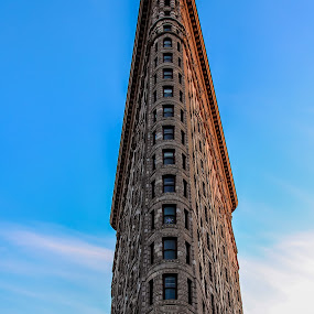 Flatiron Building by Gina Gomez - Buildings & Architecture Public & Historical ( images of the flatiron building, flat iron bldg, photos of the flatiron building, flatiron new york, flatiron nyc, flat iron building, flatiron building, flatiron, flatiron bldg )