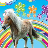 Little Pony Happy Videos