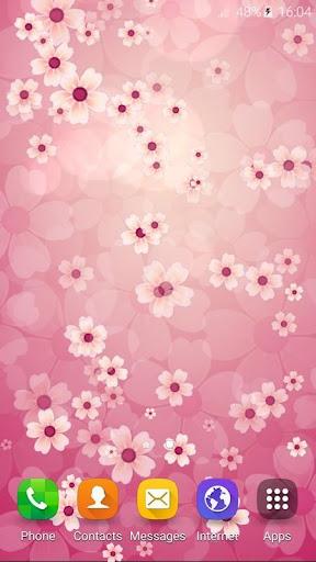 桜の花ライブ壁紙