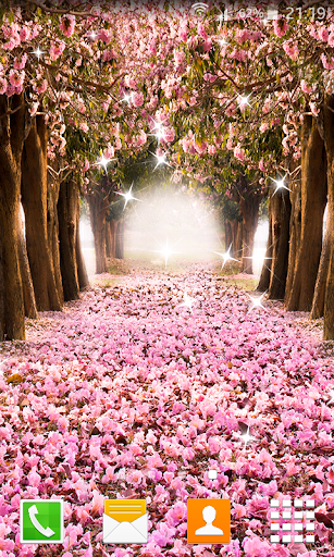 Sakura Falling Live Wallpaper Download Cherry Blossom Live Wallpapers Google Play