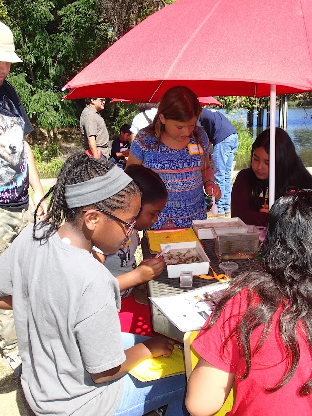 Students use spoons and magnifiers to examine critters that live in Lake Solano.