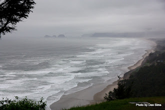 Photo: (Year 2) Day 349 - The View on the Ascent out of Cape Lookout #2