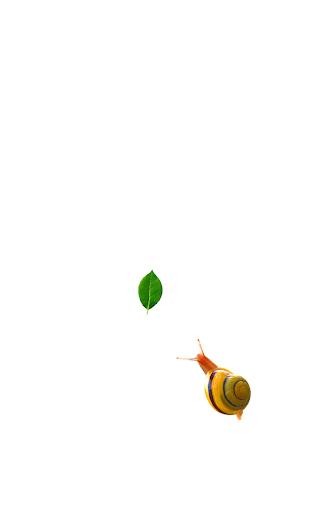 Snail  screenshots 1