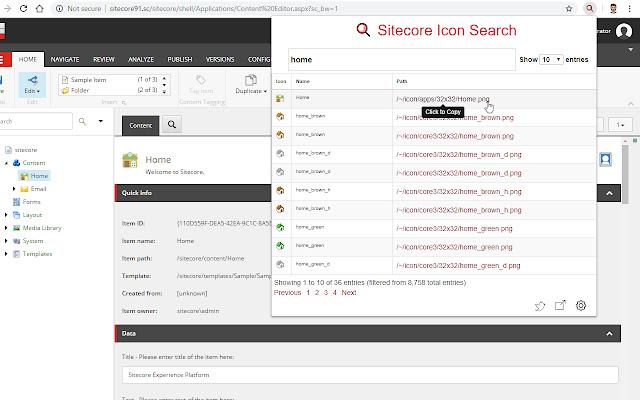 Sitecore Icon Search