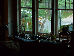 Photo: living inside, and living outside... she's now a resident in Ontario and ready to explore.
