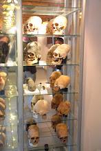 Photo: Paracas History Museum.