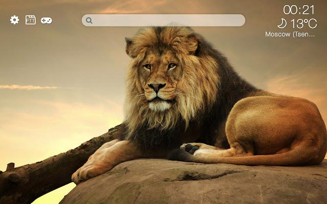 Lions HD new free tab theme