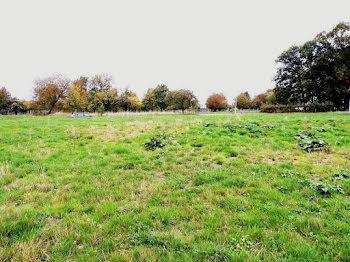 terrain à batir à Cirey-sur-Vezouze (54)