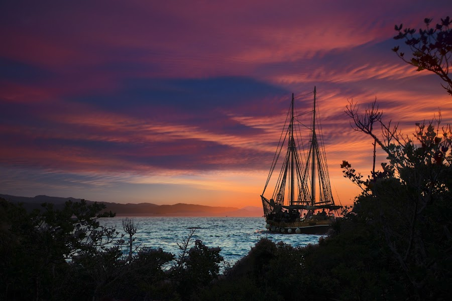 by Zoran Milutinovic - Landscapes Sunsets & Sunrises ( clouds, water, blue, matiu somes, sunset, wellington, sail boat, sun, new zealand, island )