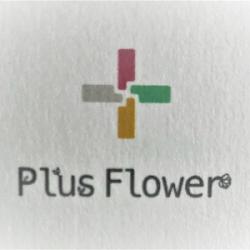 PLUS FLOWER