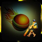 Cricket Blast 2015 Live