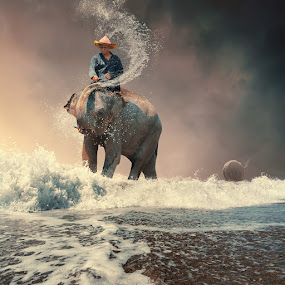 The bath by Caras Ionut - Digital Art People ( water, orange, reflection, tutorials, splash, elephant, hard day, sparkle, leaf, smoke, manipulation, playing, girl, splashing, tree, sunset, mounting, light )