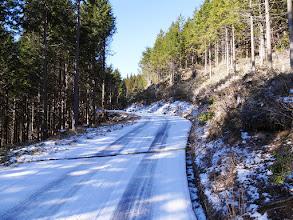 先に林道を進む