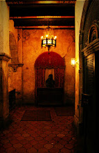 Photo: A dark and lonely hallway  As you wait for admittance to the Library in the Twilight Zone Tower of Terror in the Disney Hollywood Studios, you can't help but notice some of the various artifacts that are still in place in this abandoned hotel.  The lighting was low, and my camera doesn't handle low lights well so I had to do a bunch off processing and even then it created some fun effects. I'm still working on technique, but I think this is a major improvement over what I used to do in the past.  Full Version on Flickr: http://flic.kr/p/cwboCj  Tags: #WaltDisneyWorld #DisneysHollywoodStudios #SunsetBoulevard #HollywoodTowerOfTerror #WDWPhotoFriday