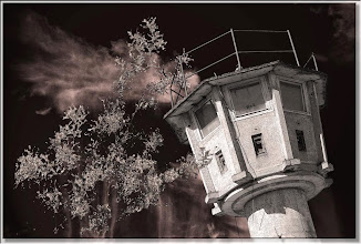 Photo: 2007 02 12 - R 06 07 17 073 d2 - D 082 - Der Wachturm - siehe P 105