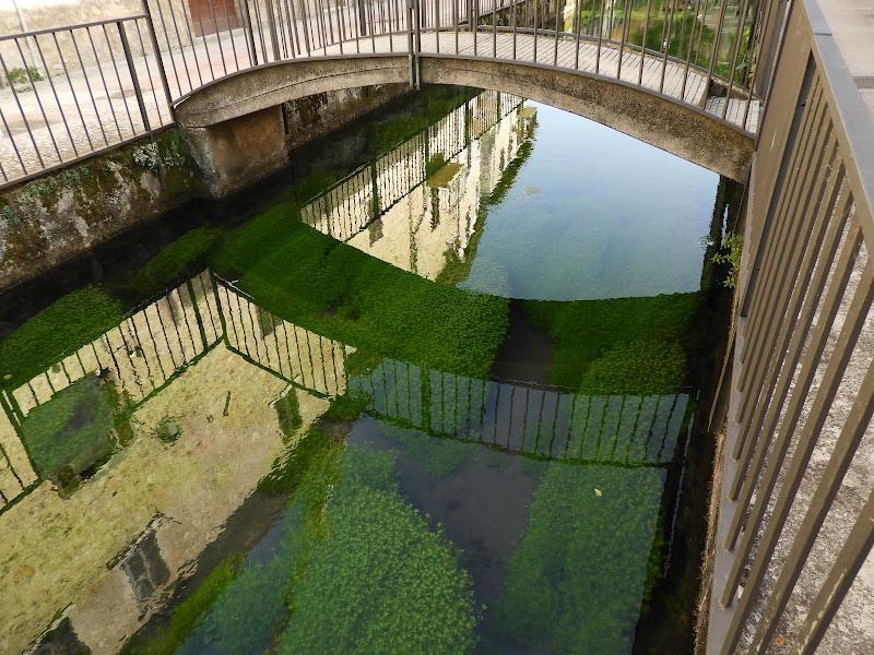 Il ponte sul canale di claudio_sposetti