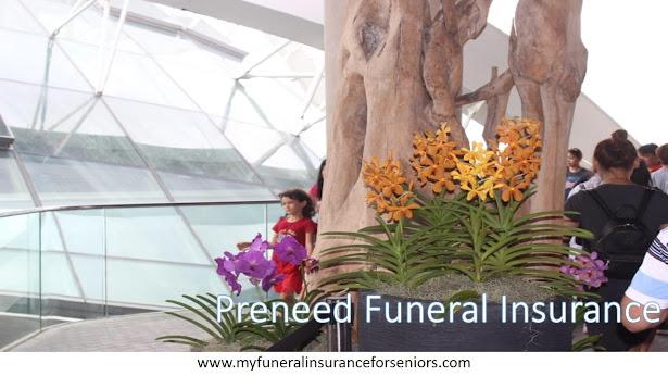 Prepaid or Preneed funeral insurance