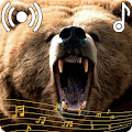 Wild Bear Sounds Ringtone APK