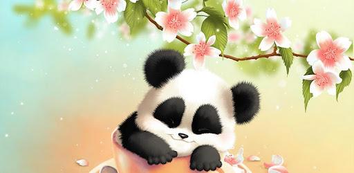 Fond D Ecran Panda Sleepy Applications Sur Google Play