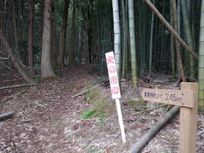 竹林を抜ける