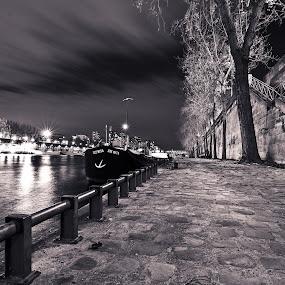 Under the Pont d'Iéna by Ibrahim Johan - Landscapes Starscapes ( paris, b&w, street )