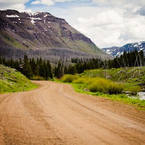 The Road Less Traveled  by Aim Huston - Landscapes Mountains & Hills ( canon, hills, stream, sigma, green, colorado )