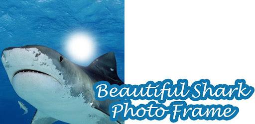 Beautiful Shark Photo Frame - Apps on Google Play