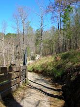Photo: Starting up N Turkey Creek Trail