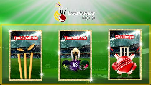 Indian Cricket: T20 Premier League  captures d'u00e9cran 2