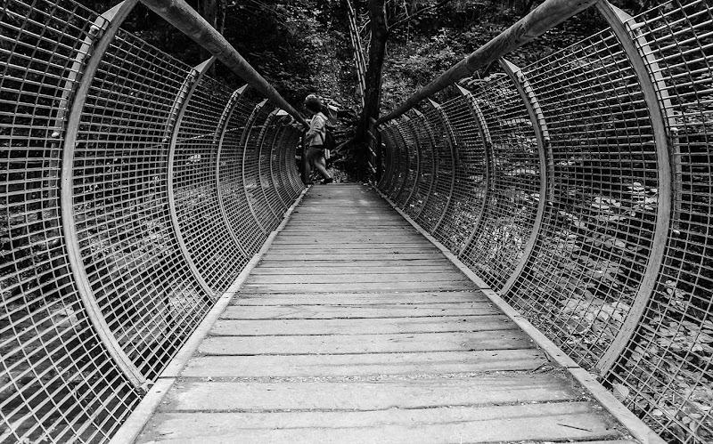 oltre quel ponte  di vincenzo_spera