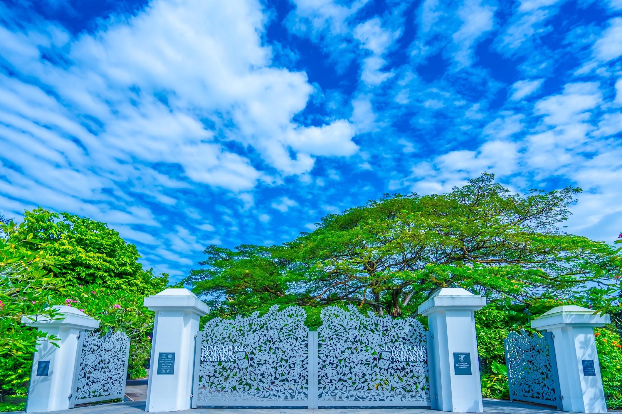 シンガポール植物園(ボタニック・ガーデン) タングリン・ゲート1