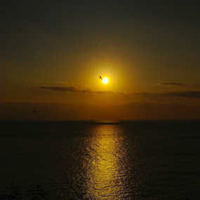 Sunset on Senggigih beach by Irfan Firdaus - Landscapes Sunsets & Sunrises ( nature, sunset, beach, travel, landscape,  )