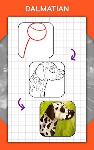 How to draw animals step by step, drawing lessons 1.3 Screenshots 12